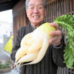 6本足が生えた珍しい大根が収穫される 育てた87歳も初体験