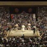 千代の富士、貴乃花、朝青龍、白鵬 全盛期で総当たりしたら一番強いのは?