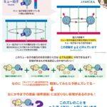 量子力学はウソだった 矛盾の実験結果 未知の素粒子を発見する事になる 茨城県の巨大加速器で再検証