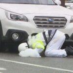 【女性の運転の特徴】小学生が横断歩道で車の下敷きになり死亡。小池香保里(31)逮捕。