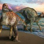 淡路島の恐竜化石は新種 命名「ヤマトサウルス・イザナギイ」
