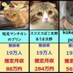 【悲報】猫youtuberの月収が凄い!!!もちまる日記がwwwwwww