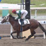 トウカイテイオー最後の子・キセキノテイオー(7歳)、競走馬デビュー目指し試験受験も不合格