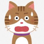 トルコで子猫5匹の首をへし折って猫鍋にして食べた日本人が国外退去「熱いからこそうまいんだ」