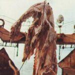 九七式艦攻が種子島沖から引き揚げされる。特攻基地のあった宇佐市が取得。展示計画