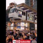 新宿駅前に猫が飛び出す巨大3Dビジョンが登場!→中国と比較するとショボすぎるとの声が殺到…