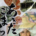 秋田県の観光 名物って何があるの?  [144189134]