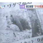 長野県で撮られた写真で山梨県クマ出没記事を書いた朝日新聞に富士吉田市「市と市民への謝罪を求める」  [932354893]