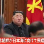 【速報】北朝鮮から日本海に飛翔体発射  [448218991]