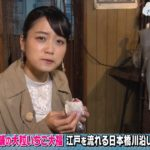 乃木坂卒業メンバーで実力で成功してるのって深川だけじゃね?