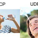 プログラマーぼく「UDP通信?仕様は固まってんの?ん、ならやるわ」